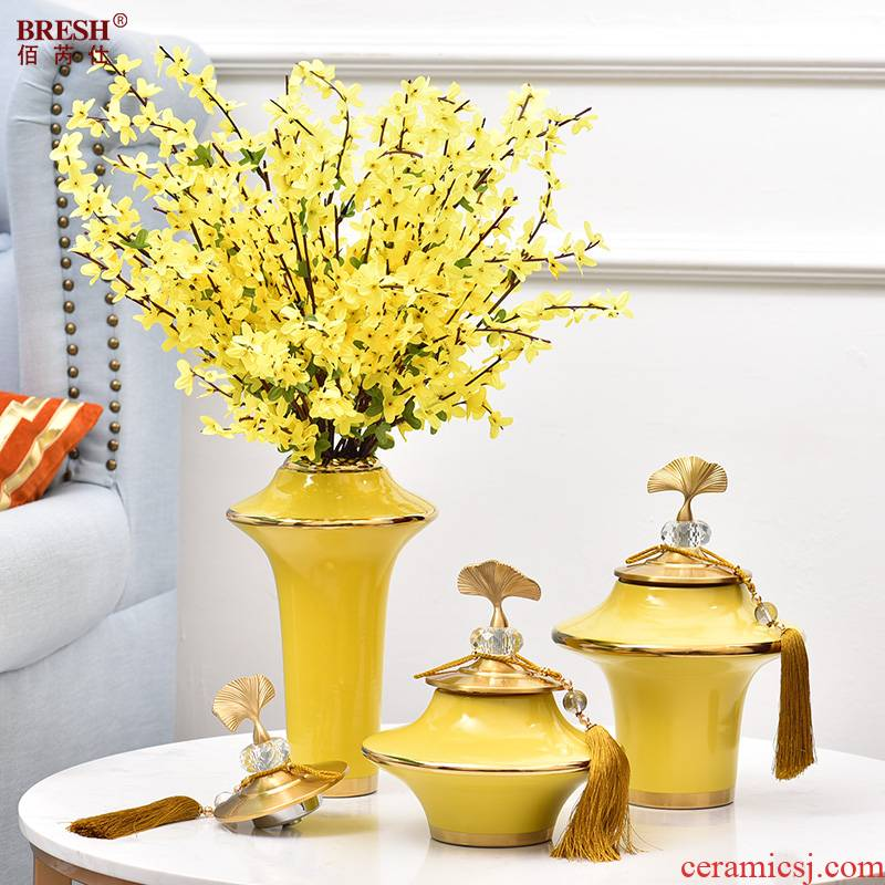 Ceramic light household act the role ofing is tasted much vase I sitting room tea table example room porch flower arrangement table furnishing articles