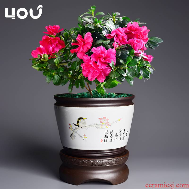 Lazy flowerpot automatic suction ceramic flower pot home of blue and white porcelain pot other special butterfly orchid orchid pot