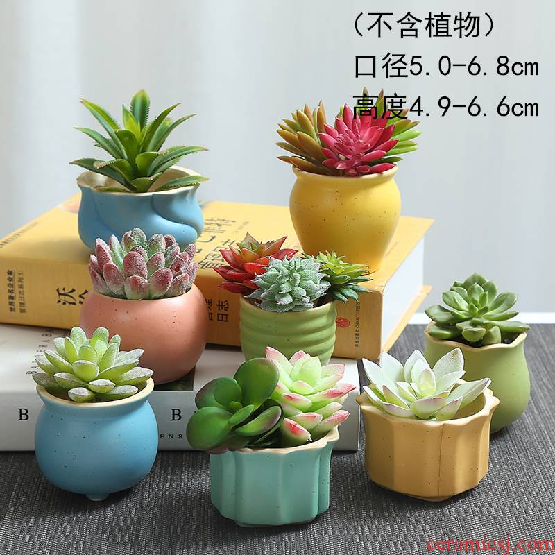 TaoXin language element burn coarse pottery breathable meaty plant flowerpot wining just large fleshy flowerpot platter green plant POTS