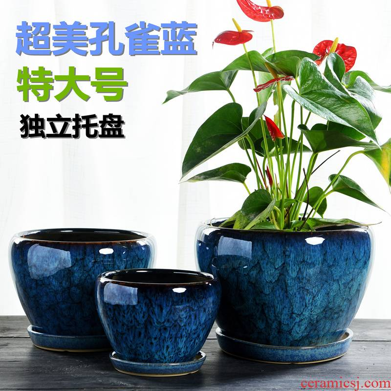 Heavy flowerpot ceramic large butterfly orchid with tray was special offer a clearance most breathable other meat rich tree, a flower pot