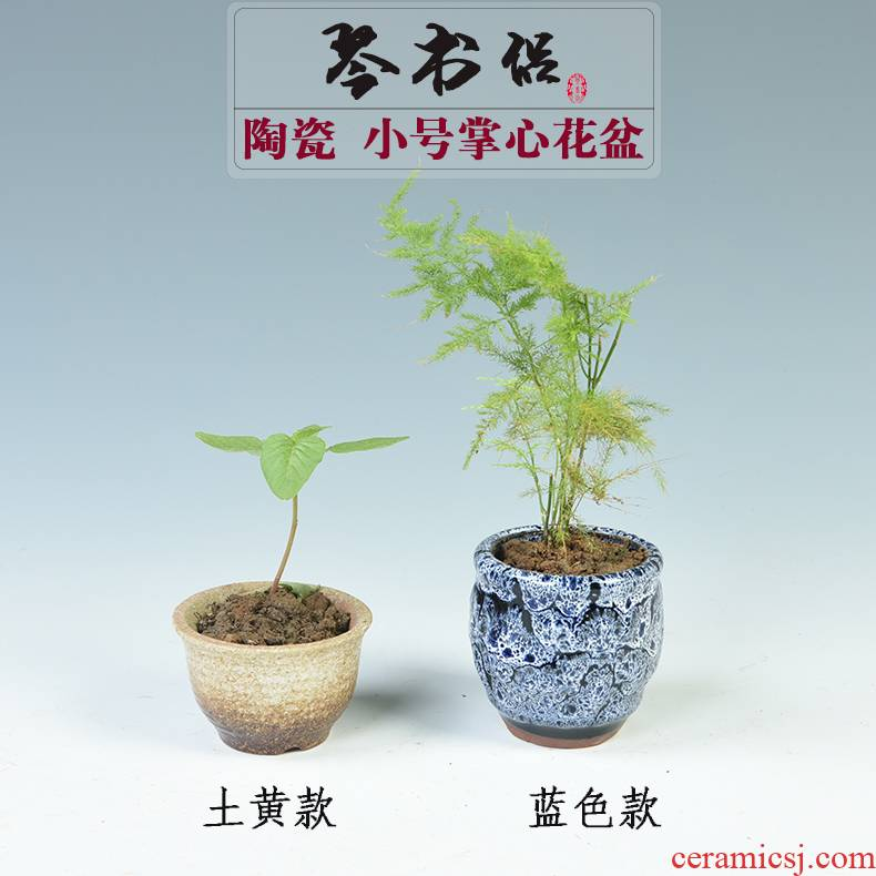 Ceramic flower POTS of meat the plants more creative purple Ceramic flower pot size over potted meat flowerpot move