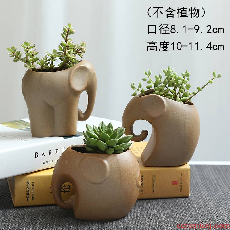 TaoXin language coarse TaoXiaoXiang meaty plant POTS cartoon creative rich tree asparagus ceramic flowerpot more meat