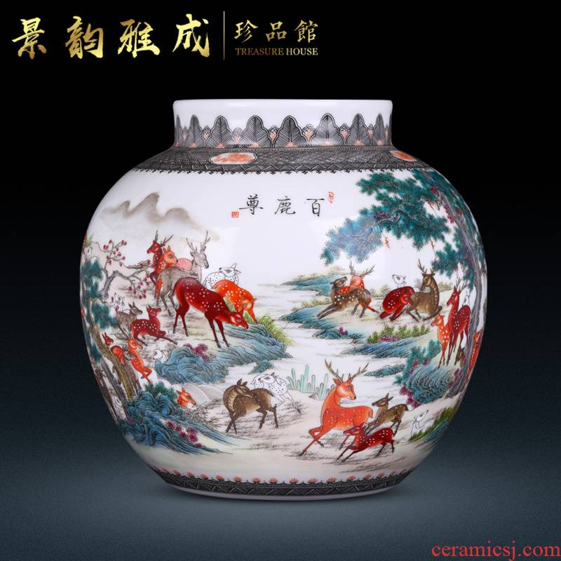 Jingdezhen ceramic home sitting room porch hand - made vases, adornment is placed new Chinese porcelain decoration process