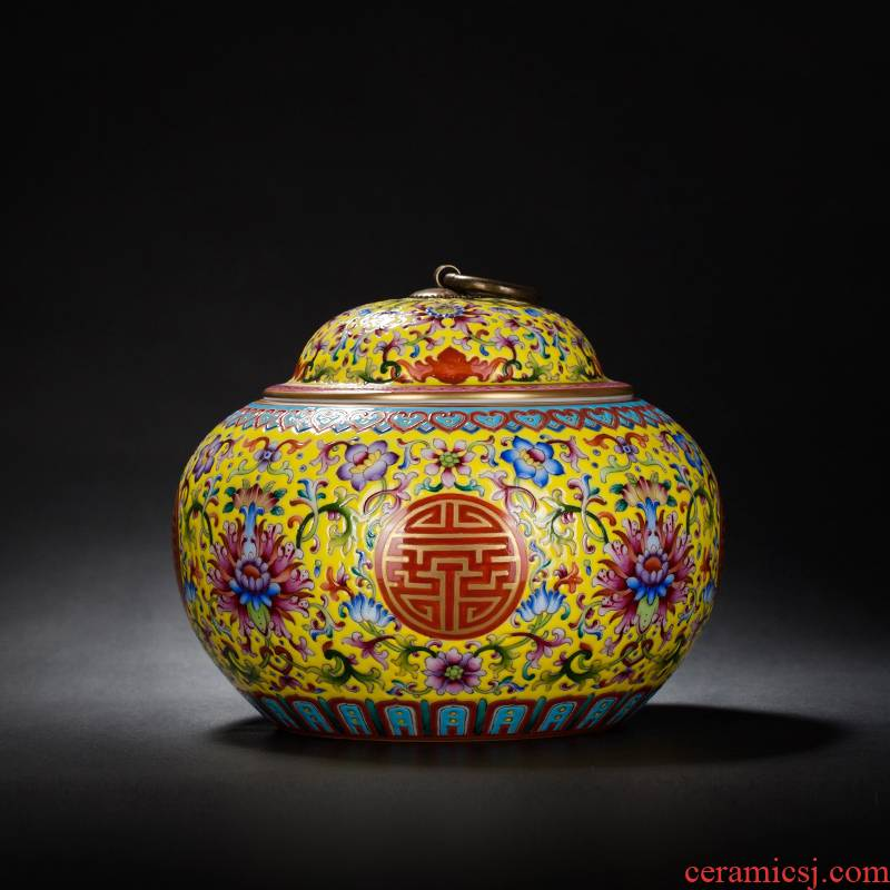 Group long - lived colored enamel jar of jingdezhen ceramic decoration ware rich ancient frame study the sitting room of Chinese style household furnishing articles