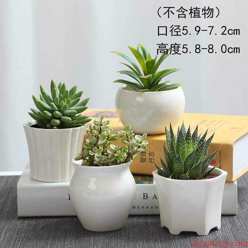 White contracted TaoXin language meaty plant flower pot ceramic creative move White porcelain, the plants potted fleshy flower pot
