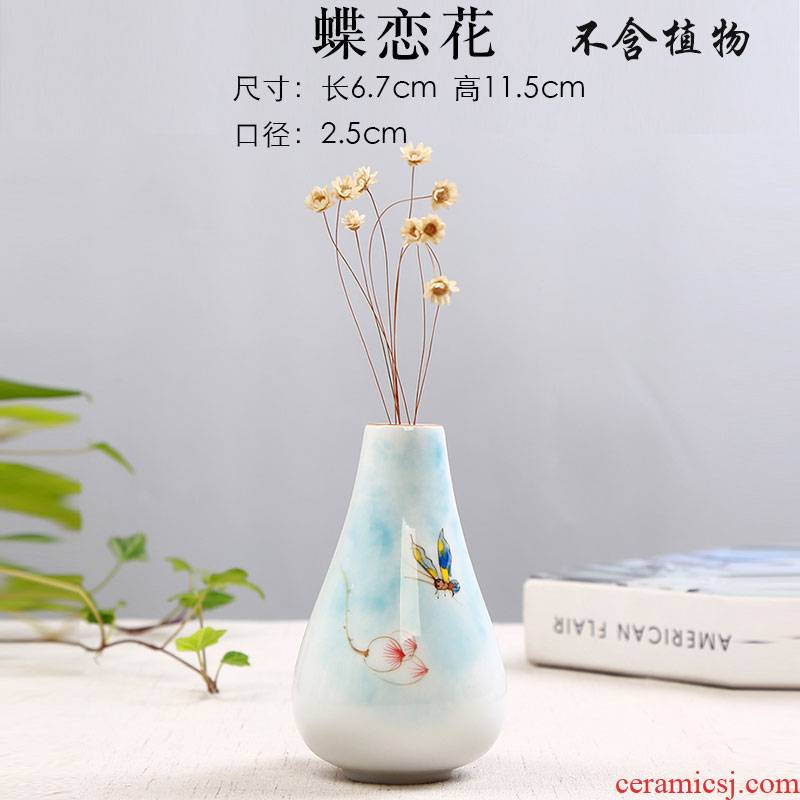 Hydroponic copper money plant grass ceramic vases, dried flowers, flowers all over the sky star flowers, white vase indoor desktop furnishing articles