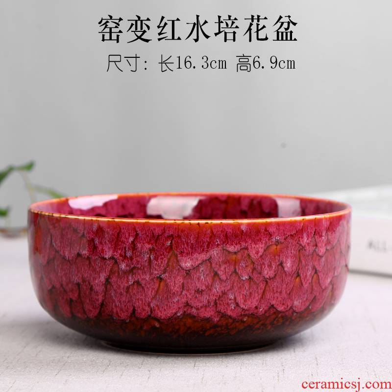 Hydroponic water raise white daffodil ceramic flower pot copper lucky bamboo grass more than other meat platter vase ceramic POTS