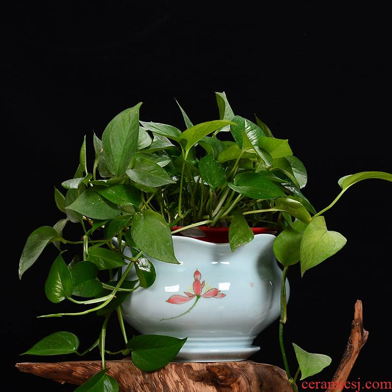 Extra large money plant pot celadon ceramics with tray indoor plant green plant potted potted orchids sitting room