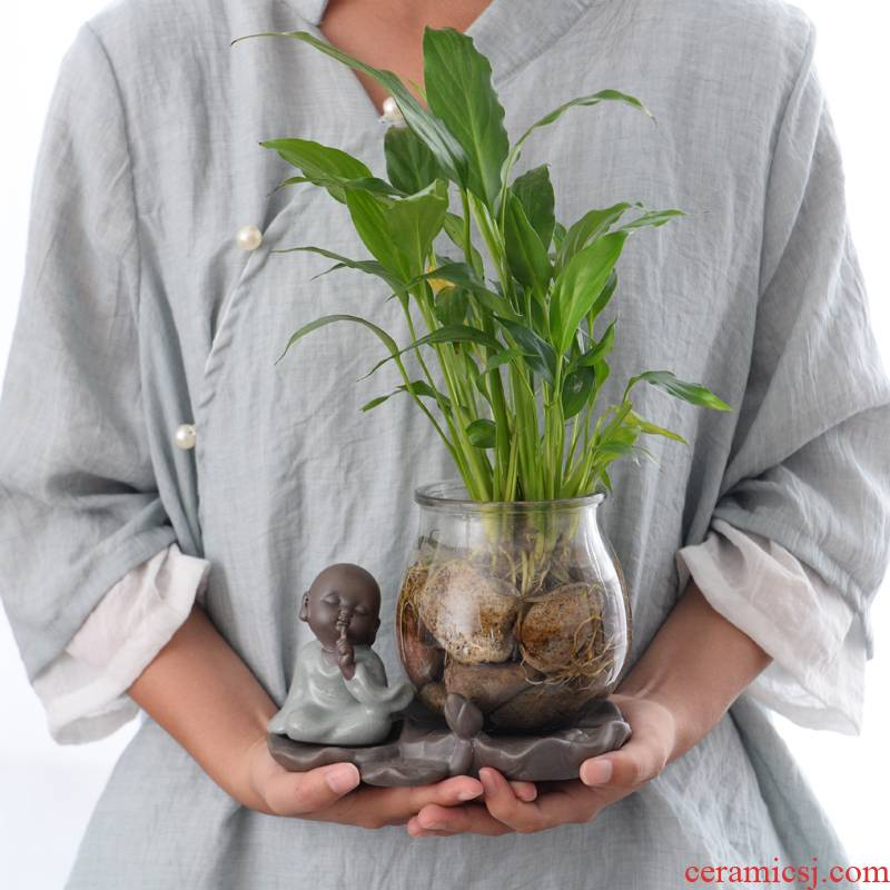 Water have other ceramic flower pot glass vase monk zen furnishing articles white palm lucky bamboo grass cooper hydroponic container