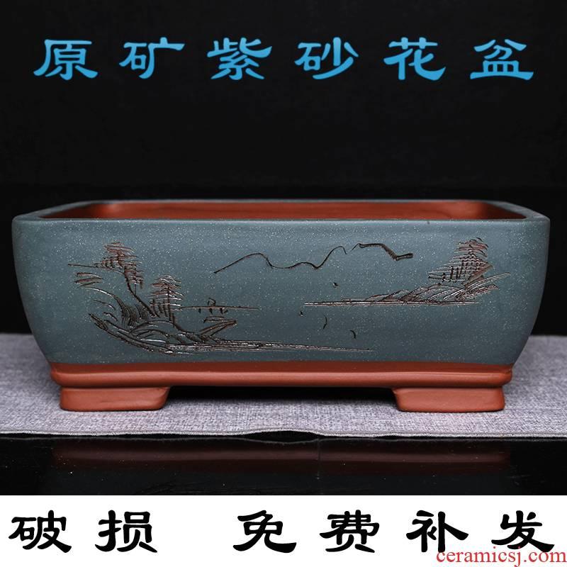 Name Plum flower miniascape of dedicated pot purple small rectangle bonsai pot rockery water Shi Lamei landscape plant asparagus