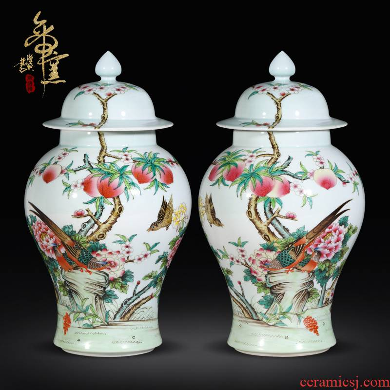 Antique hand - made pastel notes tong prosperous general pot of jingdezhen porcelain vases, Chinese style living room decorative furnishing articles