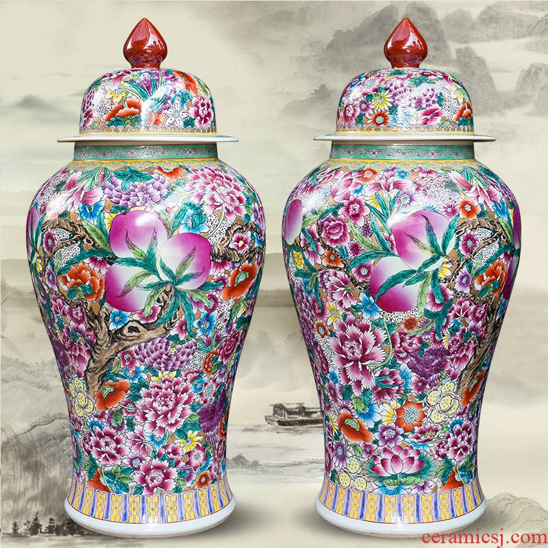 Jingdezhen pure hand - made ceramics from general famille rose flower pot big vase furnishing articles Chinese style living room floor decoration