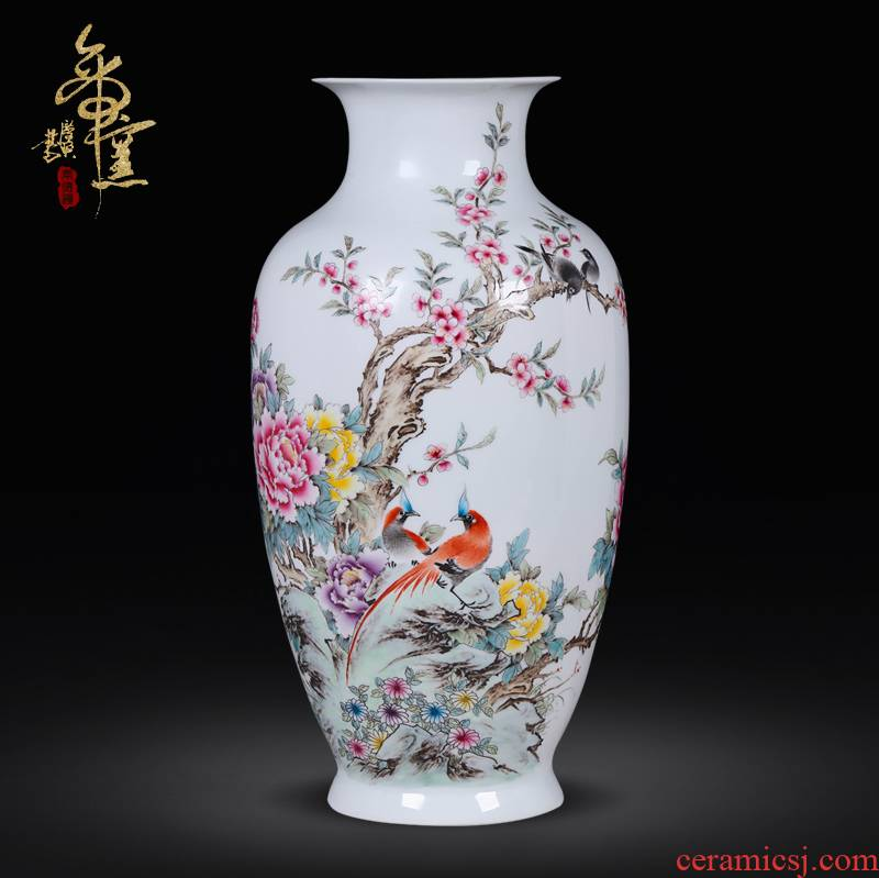 The Master of jingdezhen ceramic hand - made pastel furnishing articles of high - grade porcelain decoration art antique vase, wealth and longevity