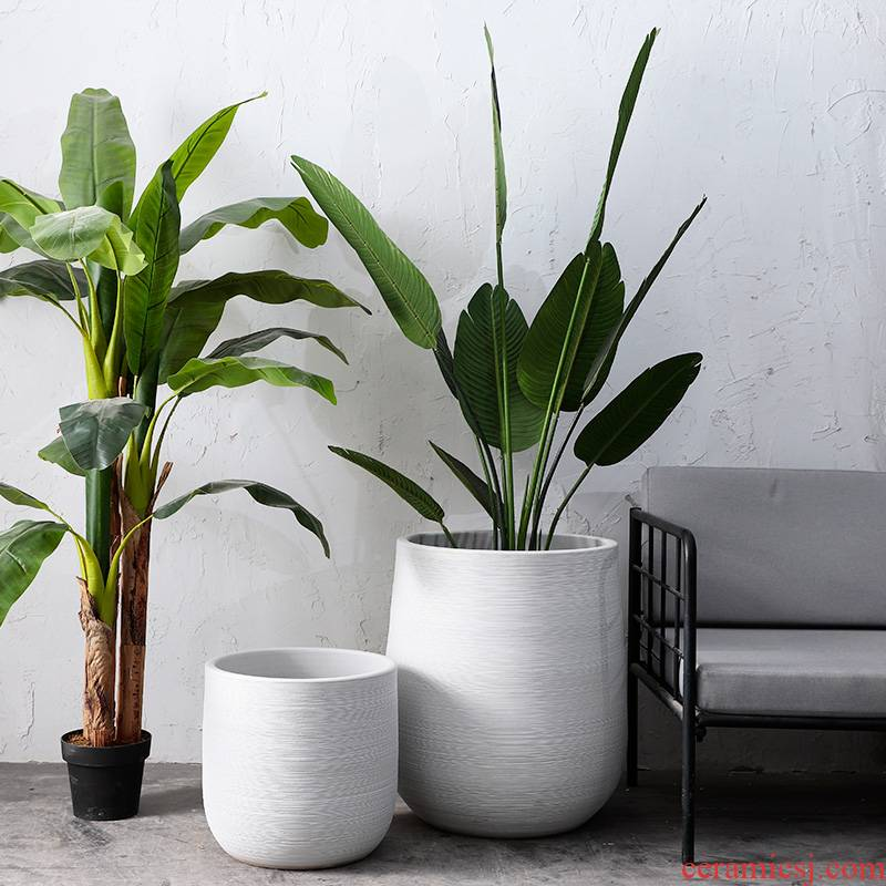 Nordic contracted Bai Sesen is a green plant flower arranging ins furnishing articles tank large ceramic vases, flower bed landing flowerpot