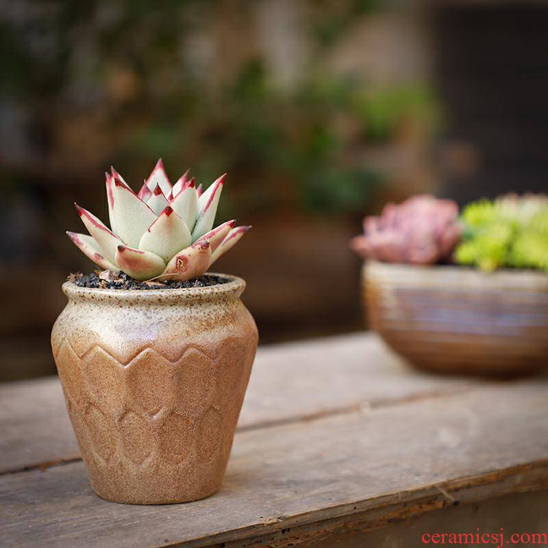 Fleshy flowerpot coarse pottery breathable creative contracted retro POTS large - sized large - diameter ceramic meat meat plant combination