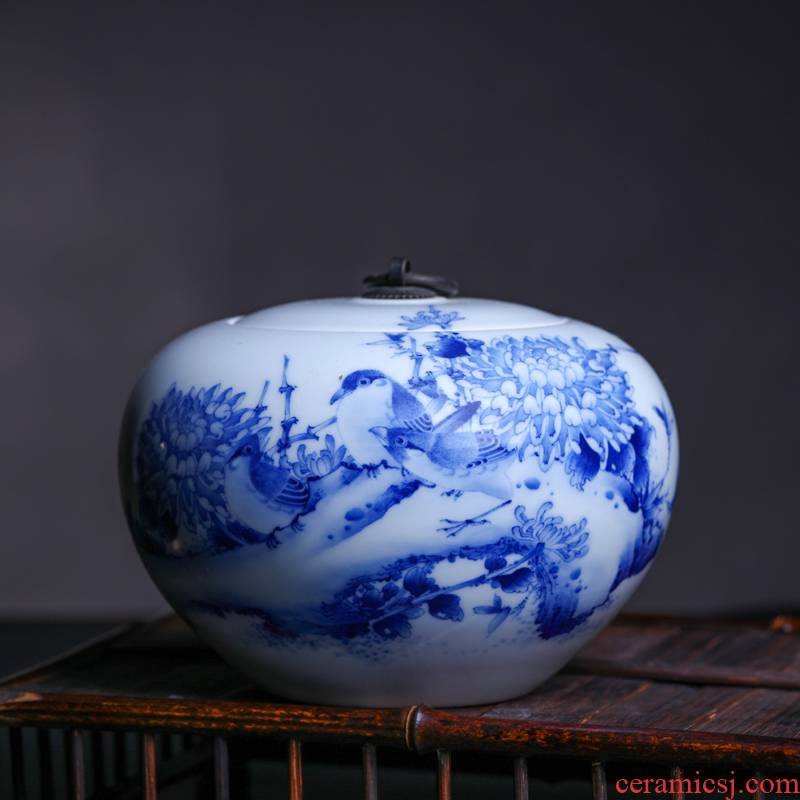 Offered home - cooked hand blue and white porcelain in jingdezhen porcelain tea pot Jin Hongxia ceramic tea tea is tea storehouse storage tank