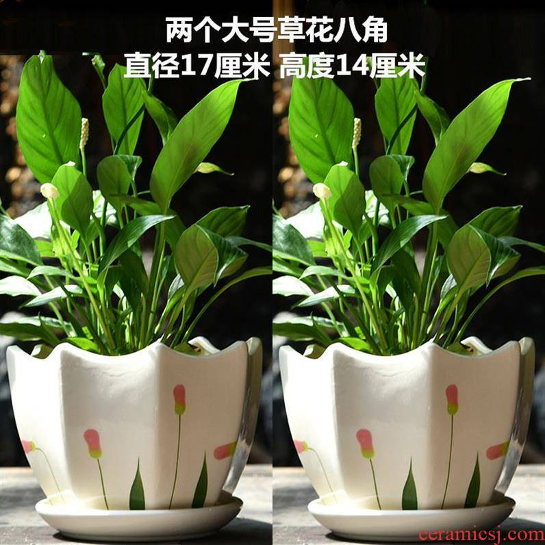 Fleshy flower pot small ceramic creative large clearance with sitting room more European tray in indoor furniture