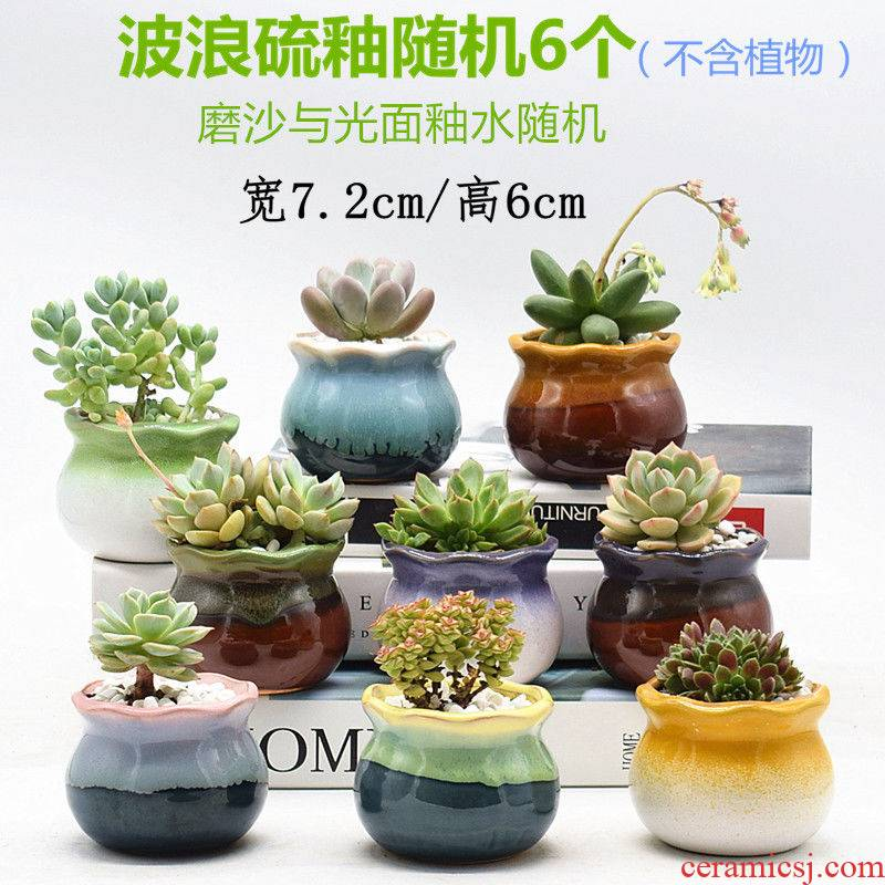 The Fleshy flowerpot ceramic special offer a clearance through pockets ceramic creative interior meat meat the plants flower pot in batch of large diameter
