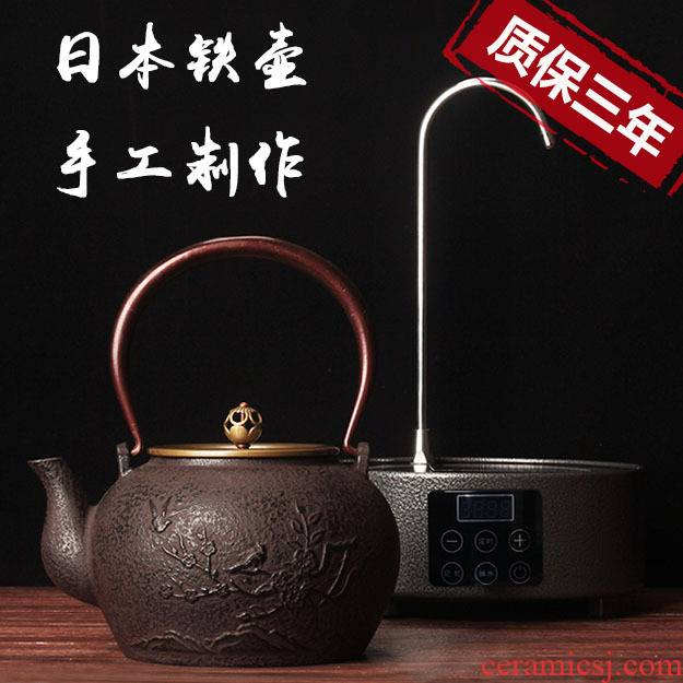 Leopard lam, pig iron pot of cast iron tea kettle Japanese household pure manual household electrical TaoLu kettle boil tea pot
