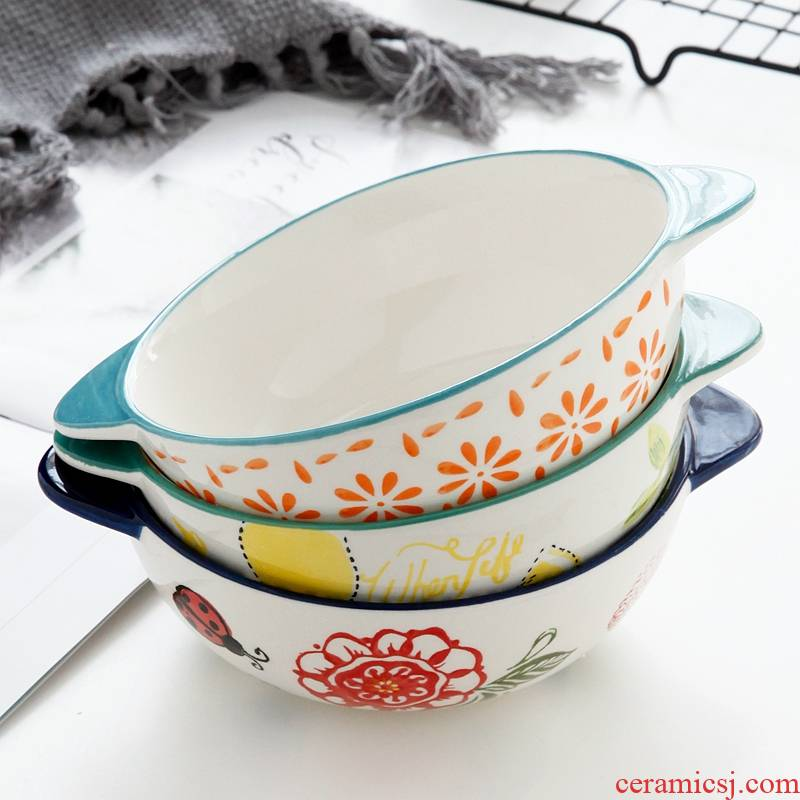 Household use ceramic bowl microwave special soup bowl of fruit salad oatmeal mercifully rainbow such use creative Japanese dishes