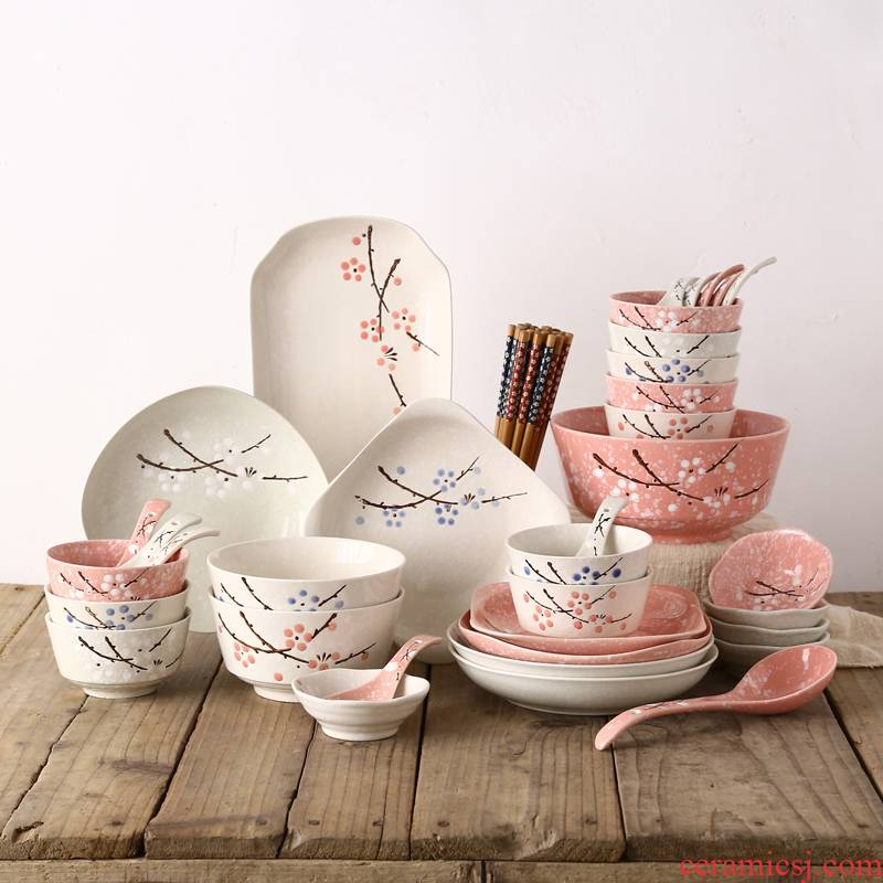 Japanese dishes suit 46 head of household ceramics tableware suit eating the food dishes, plates move wedding gift boxes