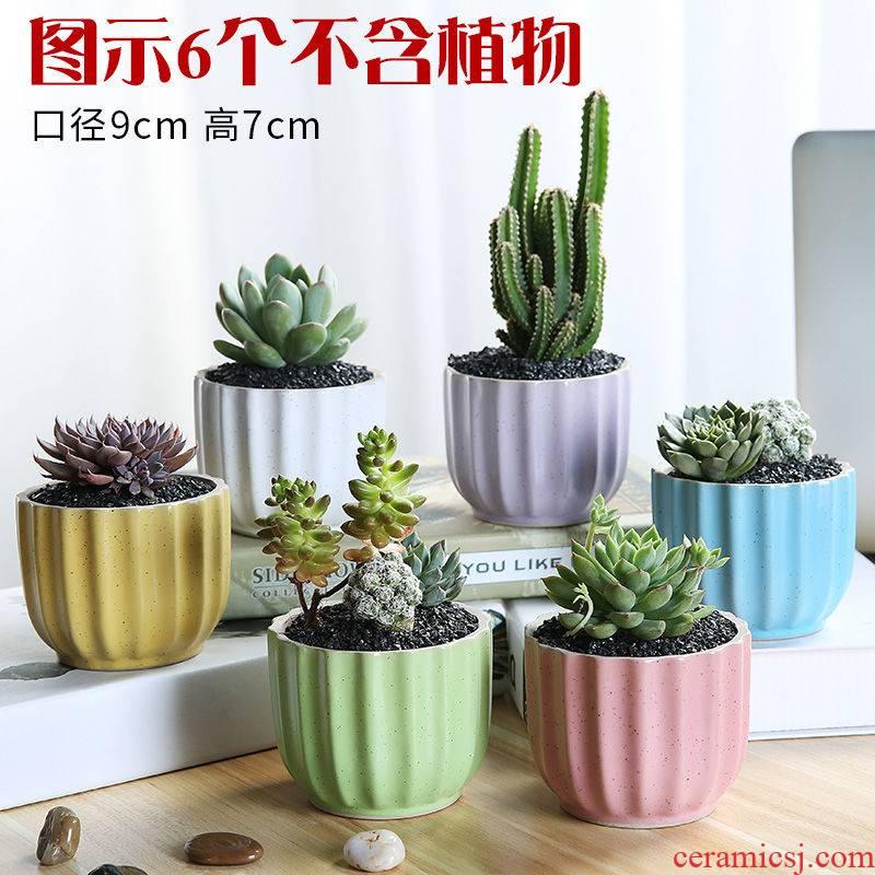 Fleshy flower - pot hydroponic plant pot TaoHua apparatus ceramic basin of thumb individuality creative flower pot in burn pot