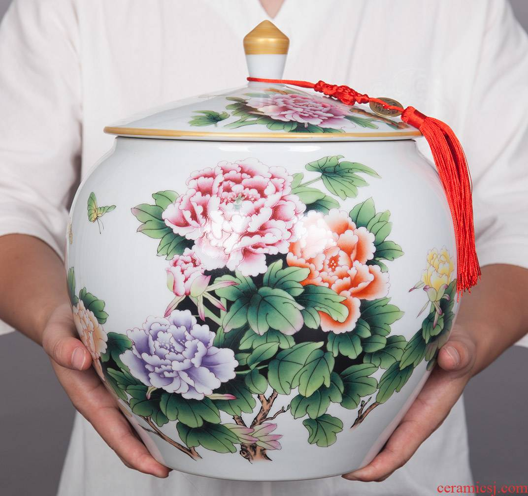 Jingdezhen ceramic wine sitting room adornment seal storage tank furnishing articles creative household porcelain jar of TV ark