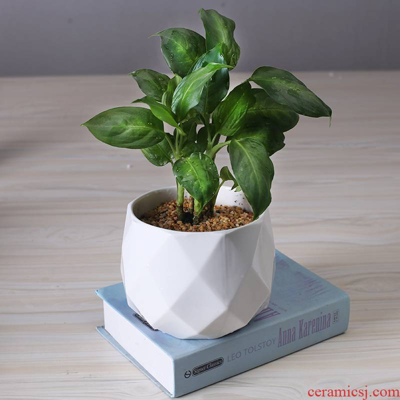 Boreal Europe style indoor desktop ceramic flower pot creative move other rich tree green plant POTS contracted household