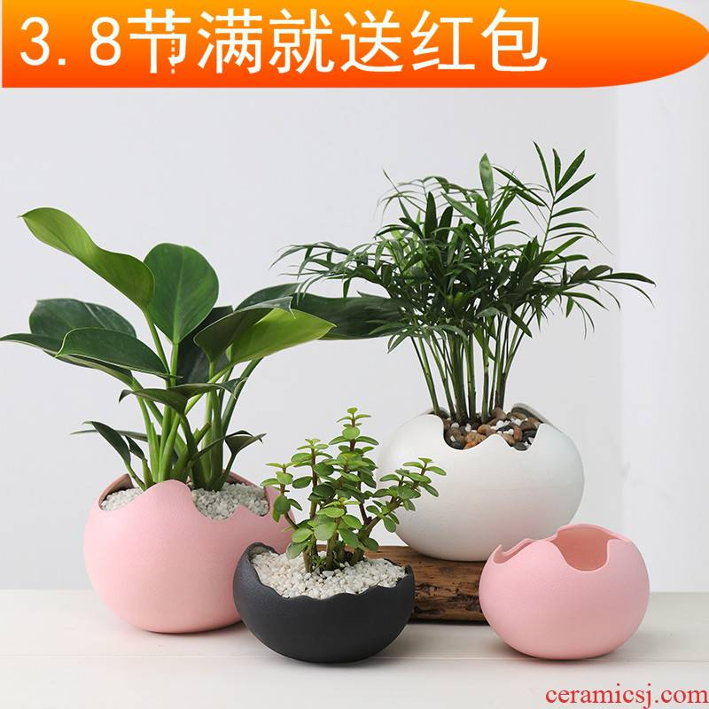 Contracted and creative move other copper grass green plant hydroponic flower pot fleshy retro desktop water flowers exchanger with the ceramics basin