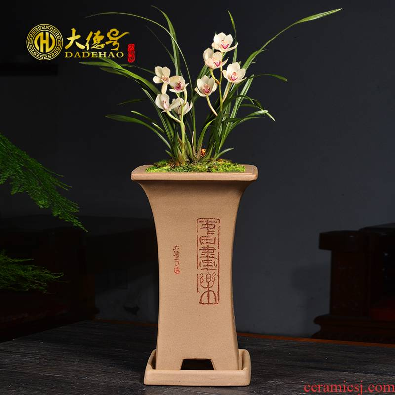 Greatness, square ceramic violet arenaceous basin valuable up phnom penh special seasons orchid plant bluegrass breathable clivia flower pot