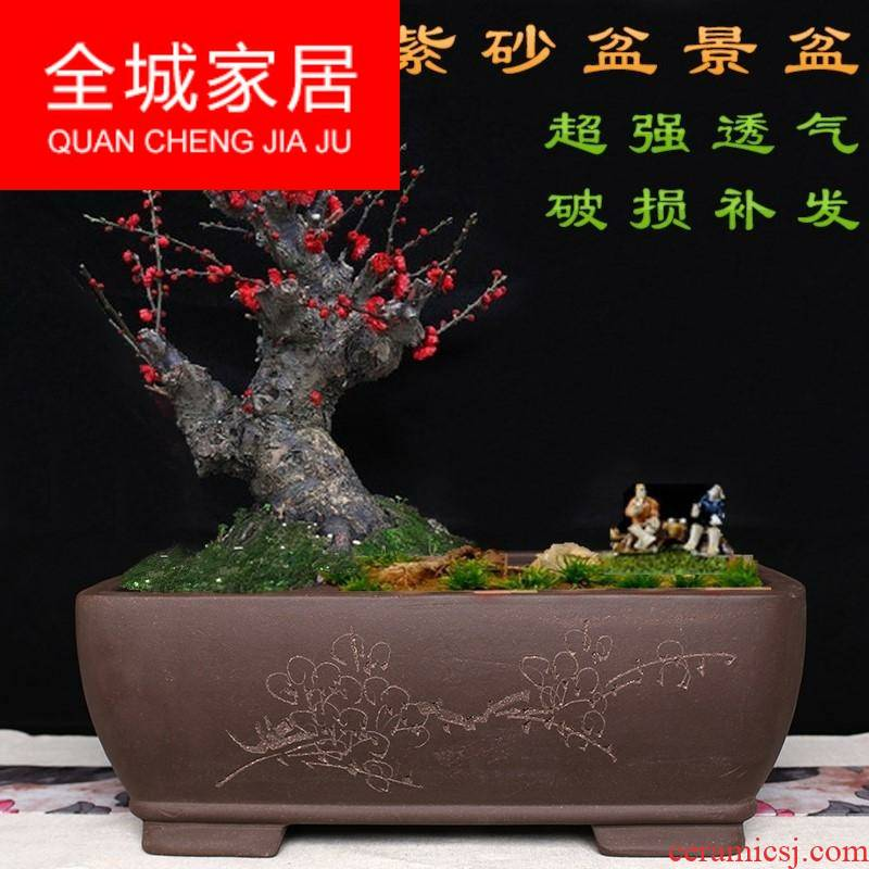 Wintersweet flowerpot name plum flower miniascape of special heavy flowerpot long big flowerpot ceramic long rectangle