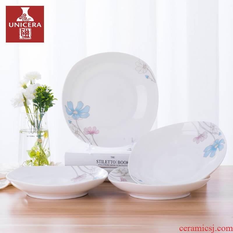 Quadrate dish dish ceramic individual creative household dumpling plate ipads deep dish European - style jingdezhen porcelain dish plate