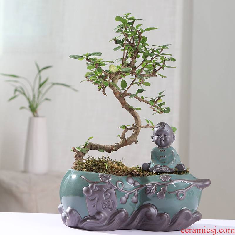 Chinese wind desktop asparagus pot pot ceramic creative move classic indoor money plant orchid art basin