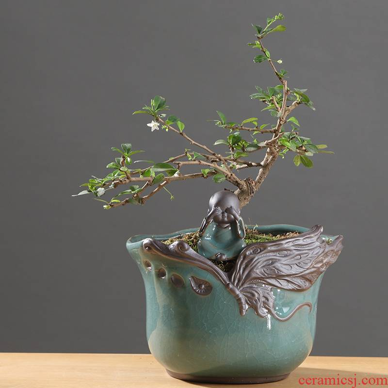 Chinese wind plant asparagus rich tree special indoor potted ceramic flower pot sitting room creative move large flowers