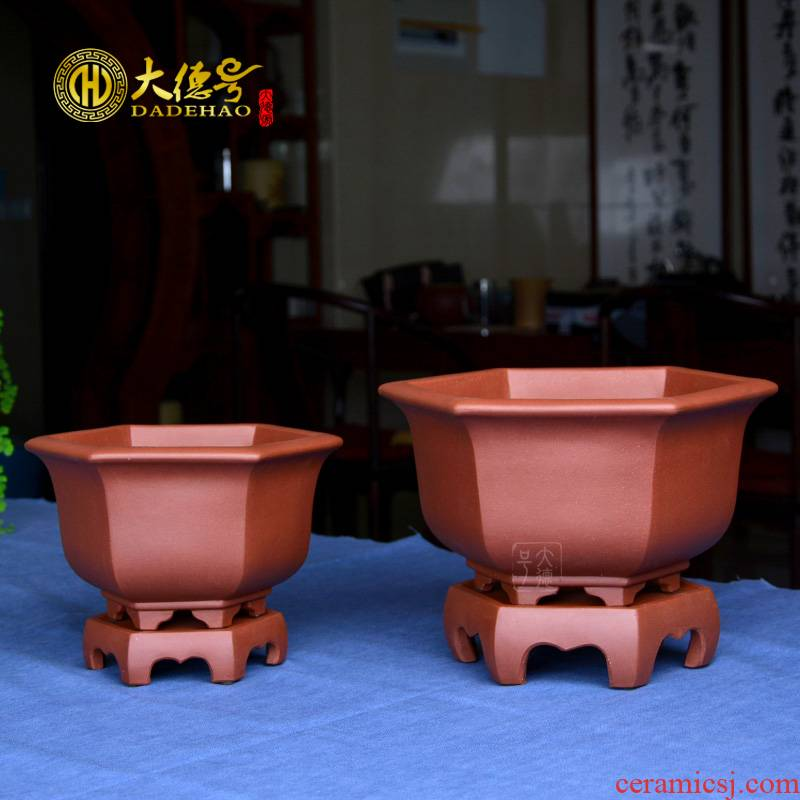 Purple orchid flower POTS yixing potted potted clivia indoor ponies six - party bluegrass basin size tray