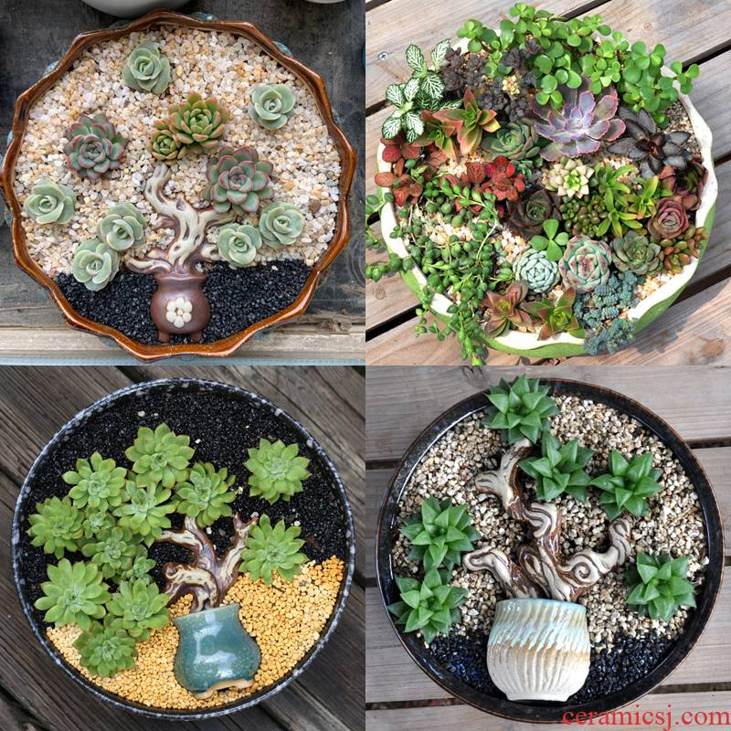 Large - diameter fleshy flowerpot ceramic green the plants breathe freely contracted wide expressions using pot Large extra Large clearance basin package mail