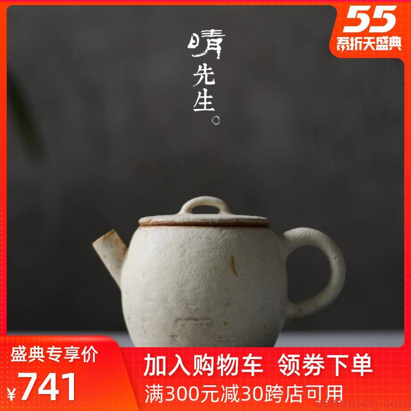Leopard lam, authentic ceramic teapot manual coarse ceramic powder away eaves tiles pot plant ash glaze teapot snow go series