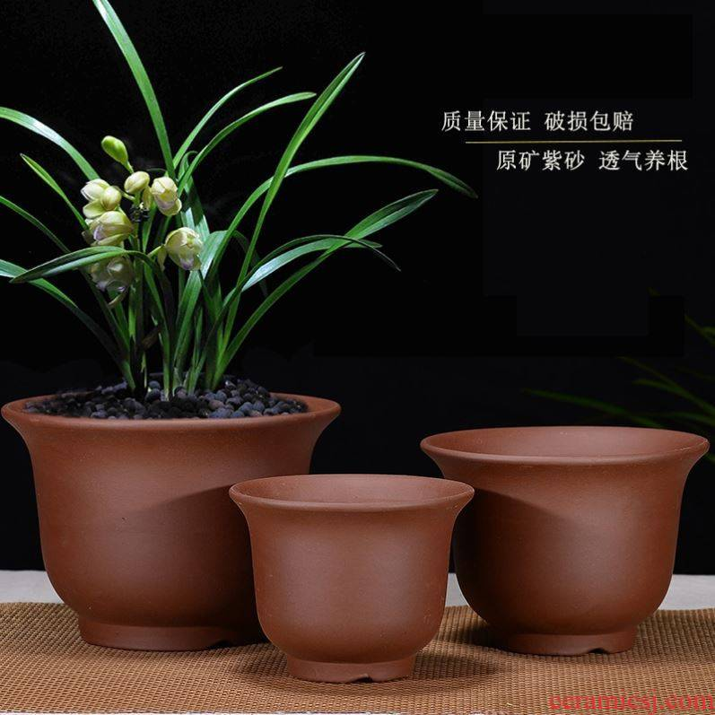Chinese rose, violet arenaceous thickening clay money plant orchid flower POTS ceramic heavy large sitting room, miniascape green plant families