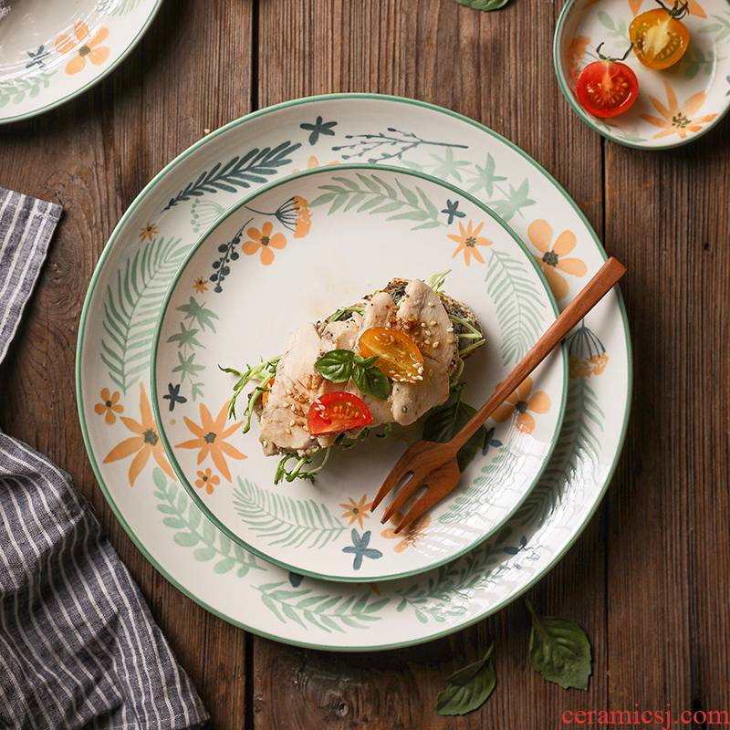 Northern wind INS ceramic creative dishes tableware move home dishes suit small bowl of soup bowl noodles fruits
