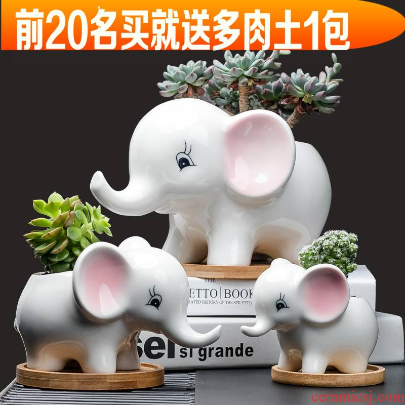 Contracted white cartoon animal meat flowerpot more creative ceramic trumpet with tray desktop celestial being plant POTS
