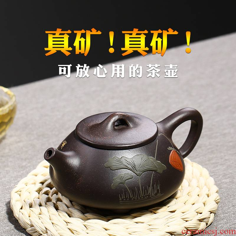 Yixing all hand black mud it xi shi pot stone gourd ladle filtering little teapot ceramic tea set flower pot