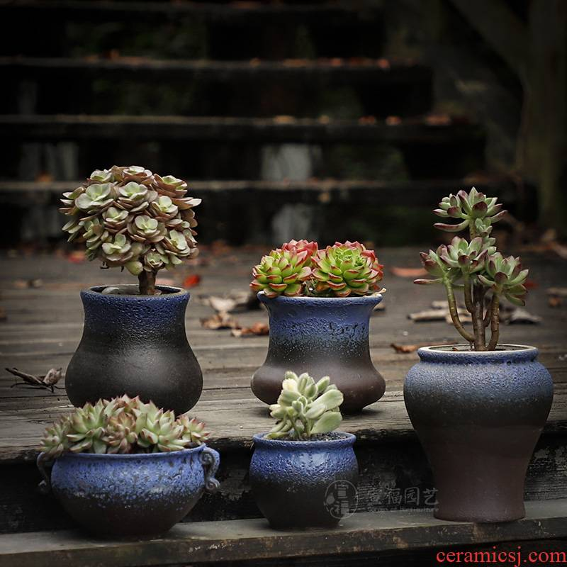 Platinum jade fleshy coarse pottery flowerpot ceramic retro meat meat the plants breathe freely, large diameter combination suit small basin of the old from running