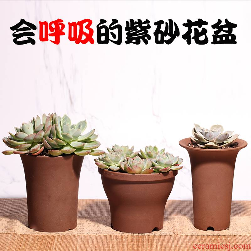 Vientiane flowerpot biscuit firing ceramic purple sand yixing creative tray indoor coarse pottery fleshy meat meat the plants other size