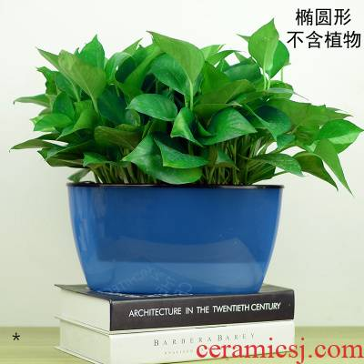 Translucent hydroponic medium other transparent ceramics green basket vase super - large automatic plastic automatic suction flowerpot