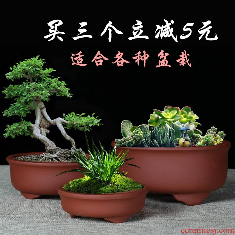 Yixing purple sand fleshy bonsai pot small chlorophytum balcony flowerpot contracted money plant green plant pot pottery and porcelain