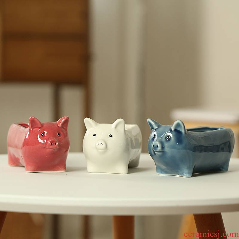 End, lovely contracted fleshy flower pot basin place adorn interior of sprouting cartoon pig ceramic delicate meat meat on sale