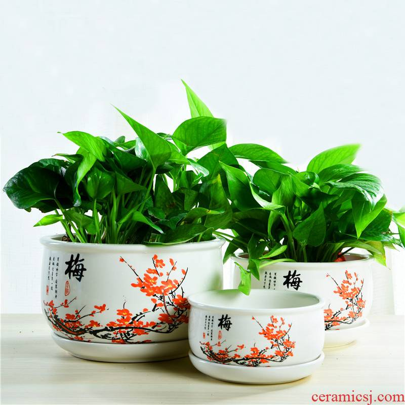 ZhuoJie fleshy flowerpot flower of bracketplant of the ceramic with extra large tray was contracted, the plants indoor household package mail
