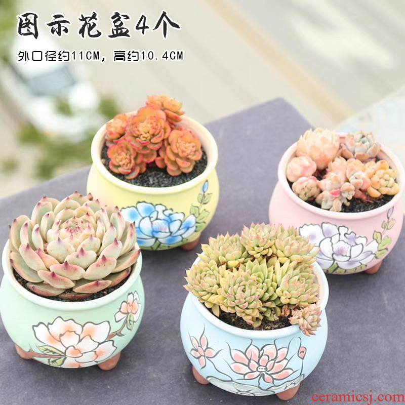 The End of hand - made of fleshy basin through pockets ceramic flower POTS, large diameter coloured drawing or pattern, fleshy creative move special offer a clearance package mail