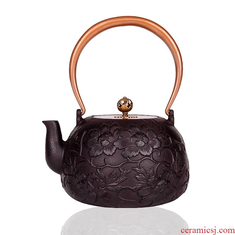 Cast iron pot of tea in southern Japan brother pig iron pot pot of boiled tea kettle teapot