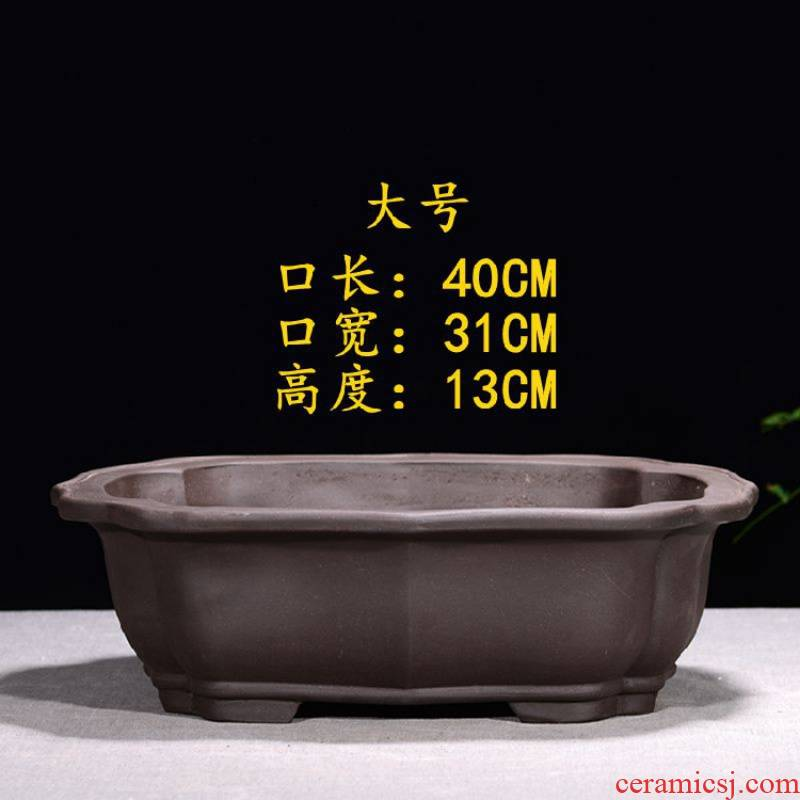 Violet arenaceous large - diameter banyan hitom ceramics bonsai POTS rockery indoor abnormity fleshy flowerpot rectangular balcony